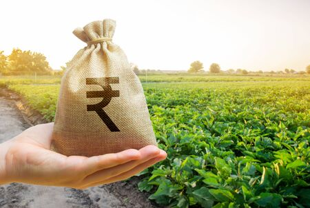 Money bag on the background of agricultural crops in the hand of the farmer. Agricultural startups. Profit from agribusiness. Lending and subsidizing farmers. Rupee, rupiah. Grants and support.