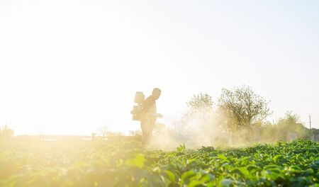 Farmer spraying plants with pesticides in the early morning. Protecting against insect and fungal infections. Agriculture and agribusiness, agricultural industry. The use of chemicals in agriculture.