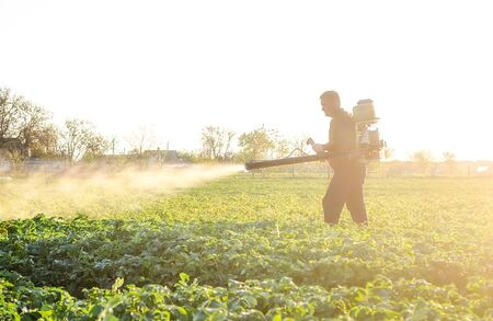 A farmer sprays a solution of copper sulfate on plants of potato bushes. Fight against fungal infections and insects. Use chemicals in agriculture. Agriculture and agribusiness, agricultural industry.