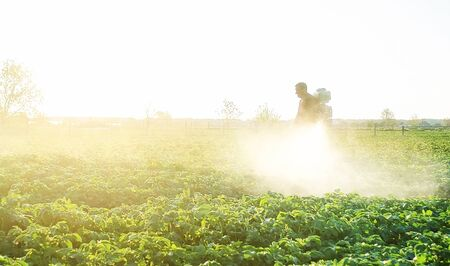 Farmer spraying plants with pesticides in the early morning. Agriculture and agribusiness, agricultural industry. The use of chemicals in agriculture. Protecting against insect and fungal infections. Imagens