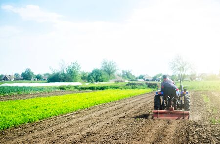 A farmer on a tractor cultivates a field before a new planting. Loosening the surface, cultivating land for further planting. Soil milling, crumbling and mixing. Agroindustry, farming. Growing food
