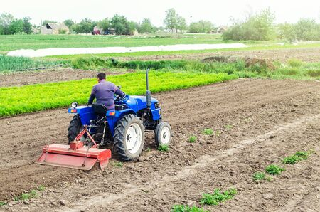 Farmer on a tractor with milling machine loosens, grinds and mixes soil. Loosening the surface, cultivating the land for further planting. Farming and agriculture. Cultivation technology equipment Imagens