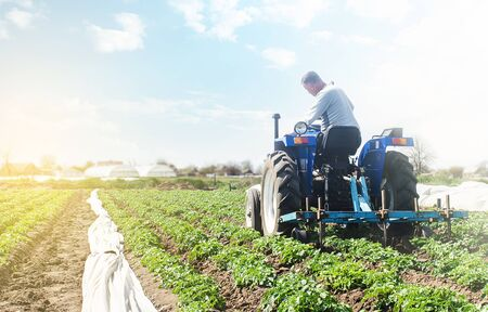 Farmer on a tractor with milling machine loosens, grinds and mixes soil. Farming and agriculture. Cultivation technology equipment. Crop care. Farming agricultural industry. Small business support. Banque d'images