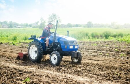 A farmer on a tractor works on the field. Growing crops in a small agricultural family enterprise. Small business support. Farming and agriculture. Cultivation technology equipment. Food production Banque d'images