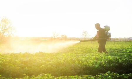 A farmer sprays a solution of copper sulfate on plants of potato bushes. Use chemicals in agriculture. Agriculture and agribusiness, agricultural industry. Fight against fungal infections and insects.