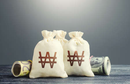South korean won money bags and cash. National gold and foreign exchange reserve. Economy monetary policy. Financial resources, grants, project financing. Capital Investments. Trade development. Stock Photo