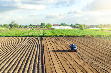 A tractor rides on a farm field. Farmer on a tractor with milling machine loosens, grinds and mixes soil. Loosening the surface, cultivating the land for further planting. Farming and agriculture. Banco de Imagens