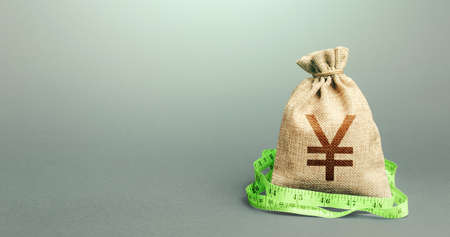 Yen Yuan money bag and measuring tape meter. Analysis of the economic situation. Assessment of capital. Declaration of income, illegal enrichment. Formation and optimization of the budget, savings.
