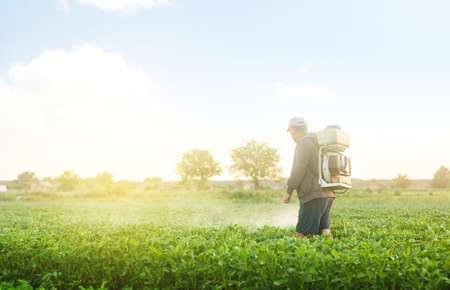 A farmer with a mist sprayer spray treats the potato plantation from pests and fungus infection. Protection and care. Use chemicals in agriculture. Agriculture and agribusiness. Harvest processing. 免版税图像