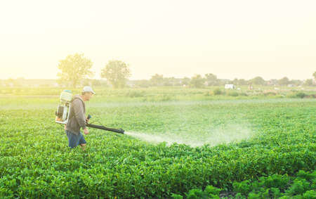 A farmer with a mist sprayer treats the potato plantation from pests and fungus infection. Use chemicals in agriculture. Harvest processing. Agriculture and agribusiness. Protection and care