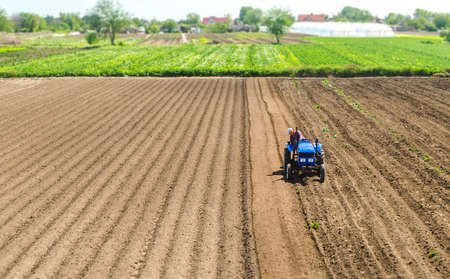 Farmer on a tractor drives on a farm field. Agriculture and agribusiness. Growing vegetables. Processing and transformation of soil for agricultural needs. Improving the quality of the land