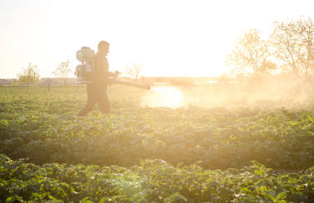 Farmer with a mist sprayer on a morning plantation. Protection and care. Use of industrial chemicals to protect crops from insects. Agriculture and agribusiness. Harvest processing
