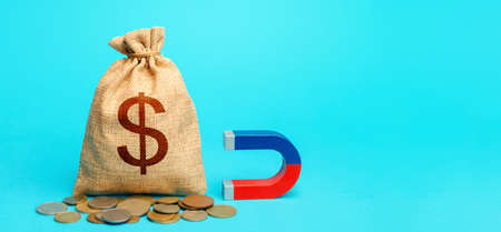 Dollar money bag and magnet. Raising funds and investments in business projects and startups. Take part in tenders. Accumulation and attraction of capital. Tax collection. Money laundering