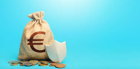 Euro money bag and protection shield. Guarantee of protection of means of savings and investments. Secured loan. Ease doing business. Financial instruments. Avoiding loss of funds during inflation. Stock Photo