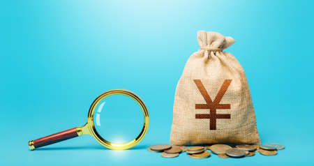 Yuan Yen money bag and magnifying glass. Revising the budget to save money. Most favorable conditions for deposits, loans. Financial audit control. Origin of capital funds. Search for financing.