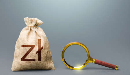 Polish zloty money bag and magnifying glass. Most favorable conditions for deposits, loans. Financial audit. Search for financing beneficiaries. Origin of capital and legality of funds.