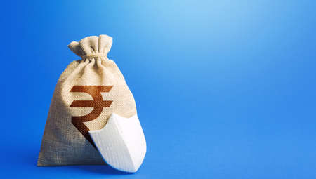 Indian rupee money bag and protection shield. Guaranteed deposits compensation. Ease doing business. Strength of financial system. Sustainable banks. Fixed interest deposit. Investment safety.
