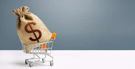 Dollar money bag on a shopping cart. Profits and super profits. Loans and microloans. Minimum living wage. Consumer basket. Business and trade concept. Public procurement, budgeting. Economic bubbles Фото со стока
