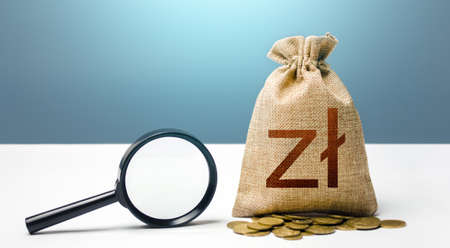 Polish zloty money bag and magnifying glass. Financial audit and monitoring of suspicious capital and transactions. Attracting investments financing. Search for beneficiaries. Budget check.