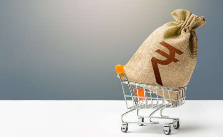 Indian rupee money bag in a shopping cart. Profits and super profits. Minimum living wage. Consumer basket. Business and trade concept. Public budgeting. Economic bubbles. Loans, microloans.