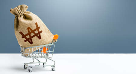South korean won money bag in a shopping cart. Profits and super profits. Minimum living wage. Public budgeting. Economic bubbles. Loans, microloans. Consumer basket. Business and trade concept.