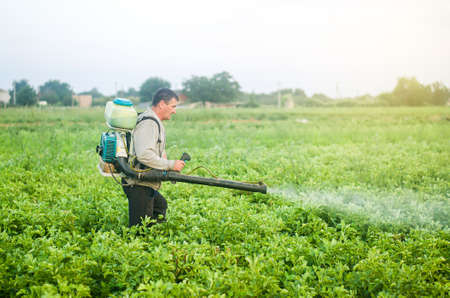 A farmer with a mist sprayer blower processes the potato plantation from pests and fungus infection. Protection and care. Fumigator fogger. Use of agriculture industrial chemicals to protect crops.