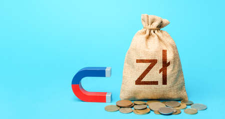 Polish zloty money bag and red blue magnet.