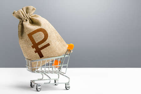 Russian ruble money bag in a shopping cart. Public budgeting. Profits and super profits. Economic bubbles. Loans, microloans. Consumer basket. Business and trade concept. Minimum living wage.
