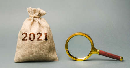 2021 money bag and magnifying glass. Budget planning. Financial goals and plans. Business and finance concept. Forecasting and analysis. Investments. Vision