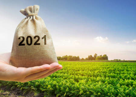 Money bag 2021 in the hands of a farmer and agricultural plantations. Harvesting, profit and budget concept. Investment in farming. Startups. Lending and subsidizing farmers. Harvest results 免版税图像