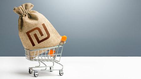 Israeli shekel money bag in a shopping cart. Public budgeting. Profits and super profits. Business and trade concept. Minimum living wage. Loans, microloans. Consumer basket. Economic bubbles. Фото со стока