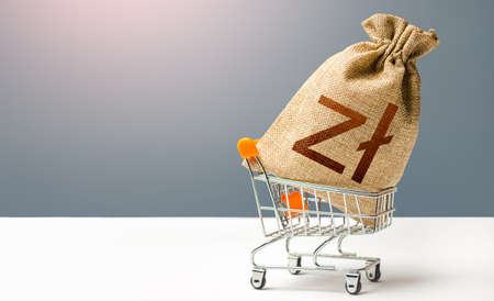 Polish zloty money bag in a shopping cart. Business and trade concept. Public budgeting. Profits and super profits. Minimum living wage. Loans, microloans. Consumer basket. Economic bubbles. Archivio Fotografico - 166688978