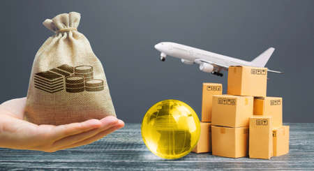 Money bag, boxes with globe and freight plane. International delivery of goods and products. Logistics, infrastructure hubs. Global business, import, export. Cargo air transportation