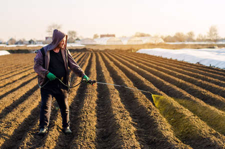 The farmer treats the field from weeds and grass for growing potatoes. Use chemicals in agriculture. Harvest processing. Agriculture and agribusiness. Protection and care. Growing vegetables Archivio Fotografico