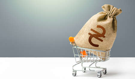 Ukraine hryvnia money bag in a shopping cart. Business and trade concept. Public budgeting. Profits and super profits. Loans, microloans. Consumer basket. Economic bubbles. Minimum living wage.