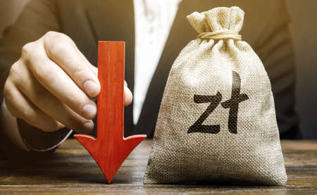 Money bag with polish zloty symbol and red arrow down. Economy fall. Economic difficulties. Stagnation, declining business activity, falling wealth. Crisis, loss savings. Recession. Businessman hand