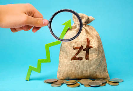 Polish zloty money bag and green arrow up. Growth of economy and increase of investment attractiveness. Developing markets. Business and finance concept. Increase profits and investment fund