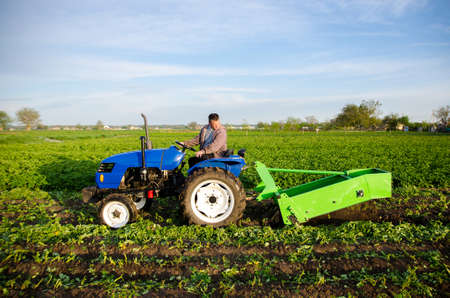 A tractor with a digging unit digs up land vegetables. The use of modern technology on the farm. Liberation of people from heavy land work. Farming and farmland. Countryside. Food production Stock fotó