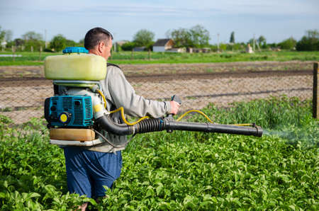 A farmer sprays chemicals on a potato plantation field. Control of use of chemicals growing food. Increased harvest. Protection of cultivated plants from insects and fungal infections.