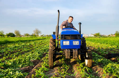 The farmer rides towards on farm field. Harvesting crops campaign, earthworks. Agro industry, agribusiness. Farming, agriculture. Harvesting potatoes in early spring. Countryside farmland.