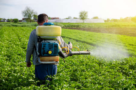 A farmer with a mist fogger sprayer sprays fungicide and pesticide on potato bushes. Effective crop protection, environmental impact. Protection of cultivated plants from insects and fungal infections