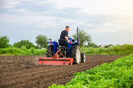 A farmer is cultivating a farm field. Milling soil, crushing before cutting rows. Loosening surface, land cultivation. Plowing field. Removing roots and plant tops. Farming, agriculture.