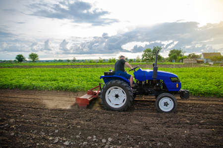 A farmer on a tractor mills and cultivates an agricultural field. Milling soil, crushing and loosening ground before cutting rows. Use of agricultural machinery and to simplify and speed up work