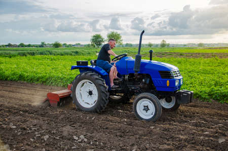 A farmer is cultivating a farm field. Milling soil, crushing before cutting rows. Farming, agriculture. Loosening surface, land cultivation. Plowing field. Removing roots and plant tops