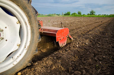A tractor with a cutter unit is cultivating the field. Loose crushed moist soil after cultivating with a cultivator. Loosening surface, land cultivation. Farming. Use agricultural machinery