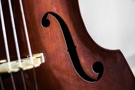 Double bass play Banco de Imagens