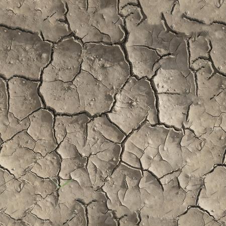 Seamless Cracked Land