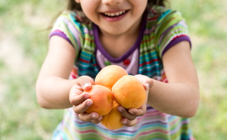 Little Girl Holding Apricots In Hands In Garden Stock Photo