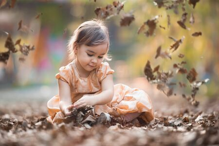 Portrait of Little Child Girl in Autumn in Nature Park Stock Photo - 132259455
