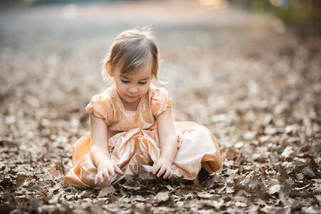 Portrait of Little Child Girl in Autumn in Nature Park Stock Photo - 132259505